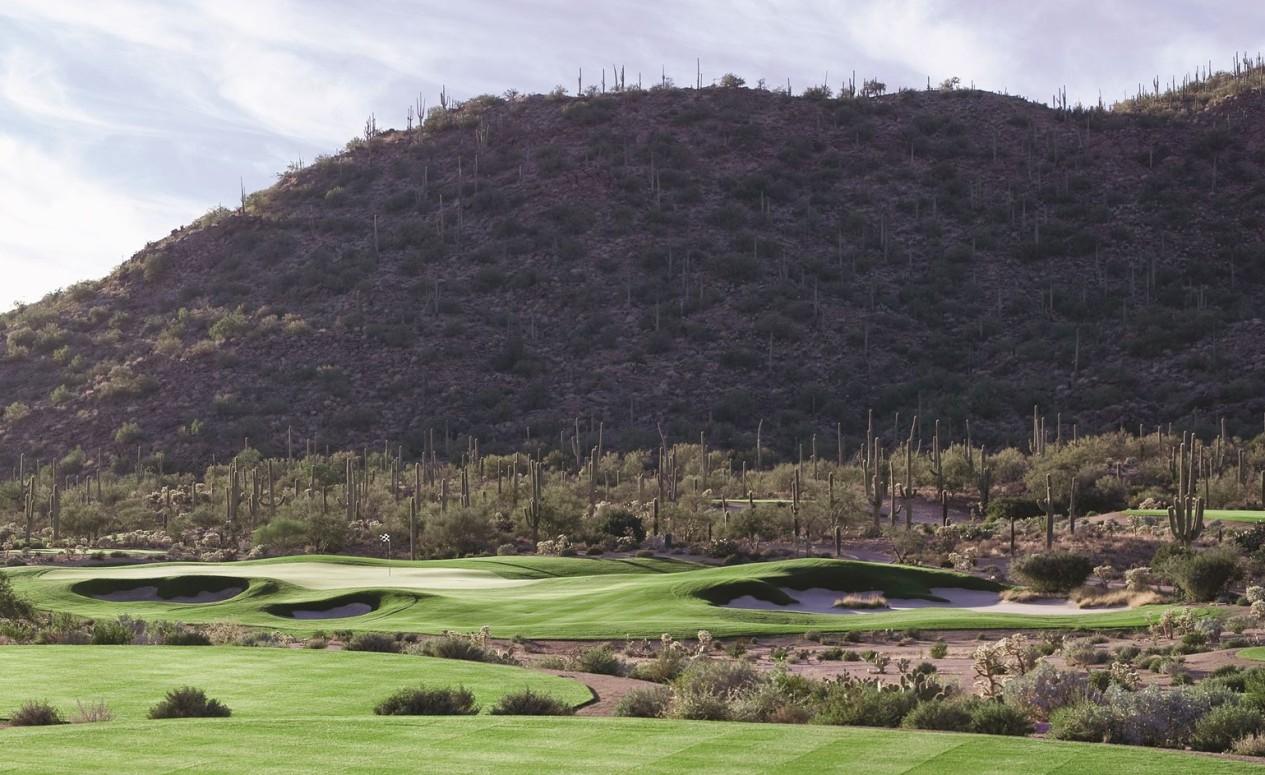 Dove Mountain golf course