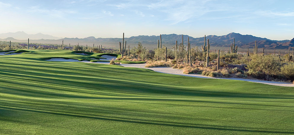 Tree shadows casting across the golf course. The Golf Club at Dove Mountain is just one of many perks homeowners of our luxury homes enjoy daily.
