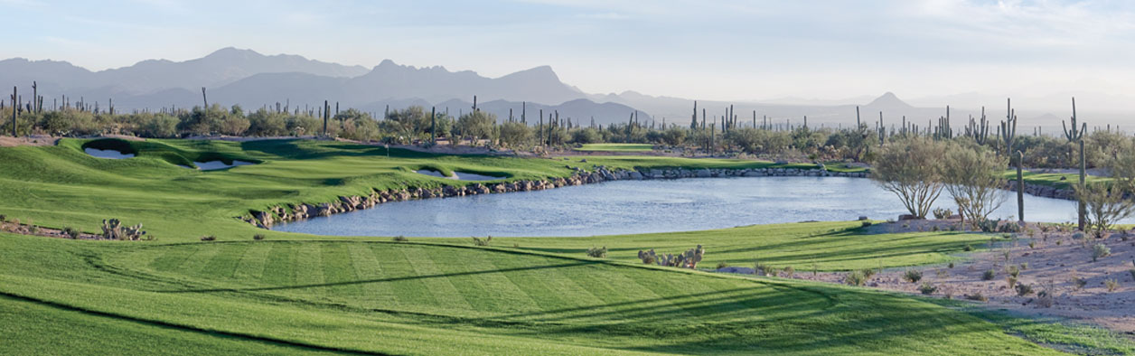 The Ritz-Carlton Residences at Dove Mountain is not only a great place for the family, but also the serious golfer.