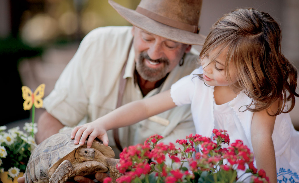 Girl petting a turtle. While our luxury Dove Mountain homes will be a great place to relax, you'll find the community has a wealth of fun outdoor activities awaiting you and your family.