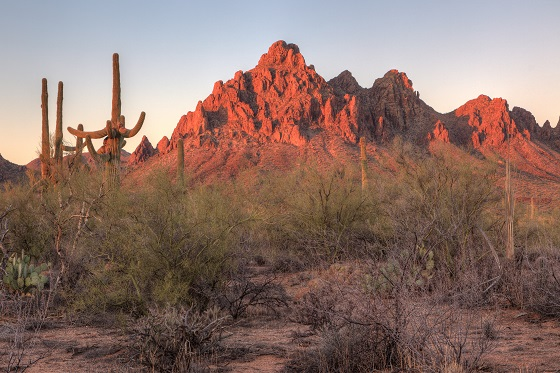 Sunrise on Ragged Top in Ironwood Forest National Monument